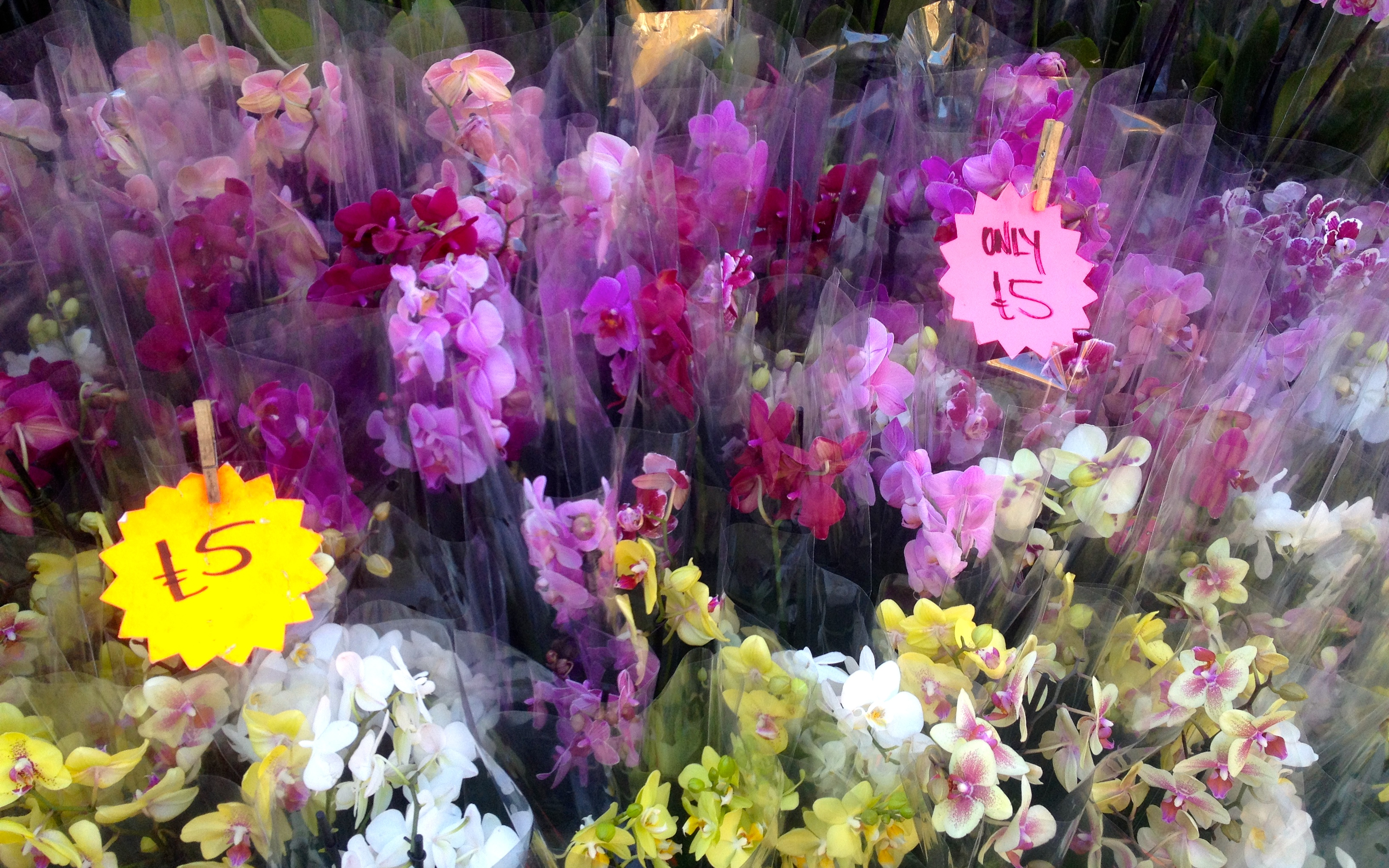 how to get to columbia road flower market